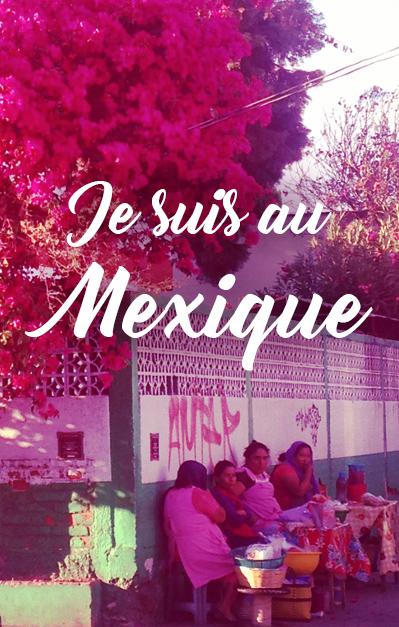 footer-ou-suis-je-mexique